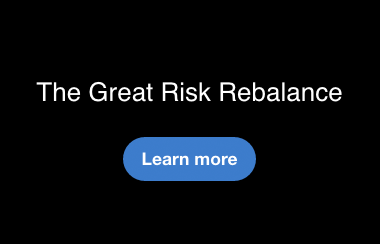 The Great Risk Rebalance